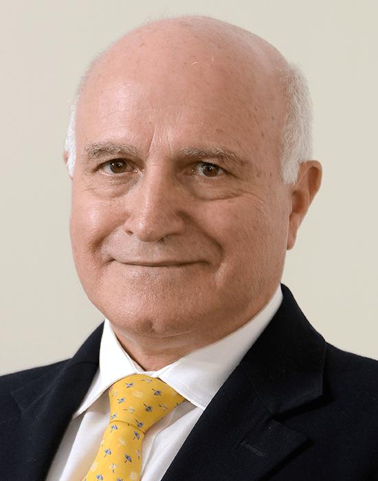 Mr. Carlos Alberto Pereira Goulart